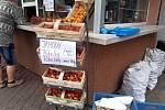Stánkový prodej jahod v Mladé Boleslavi.