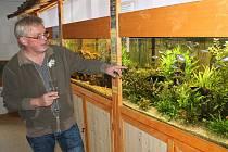 V mladoboleslavském Ekocentru Zahrada byla otevřena nová expozice Vodní svět. Domov tu našel i vzácný druh parmičky, který by objeven teprve v roce 1991. V Ekocentru se lidé mohou blíže seznámit i s dalšími zvířaty, jako například agamou, chameleonem a ha