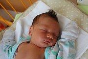 TEODOR SVOBODA se narodil 29.7., vážil 3,95 kg a měřil 50 cm. Maminka Barbora a tatínek Dominik si své první miminko odvezli domů do Kosmonos.