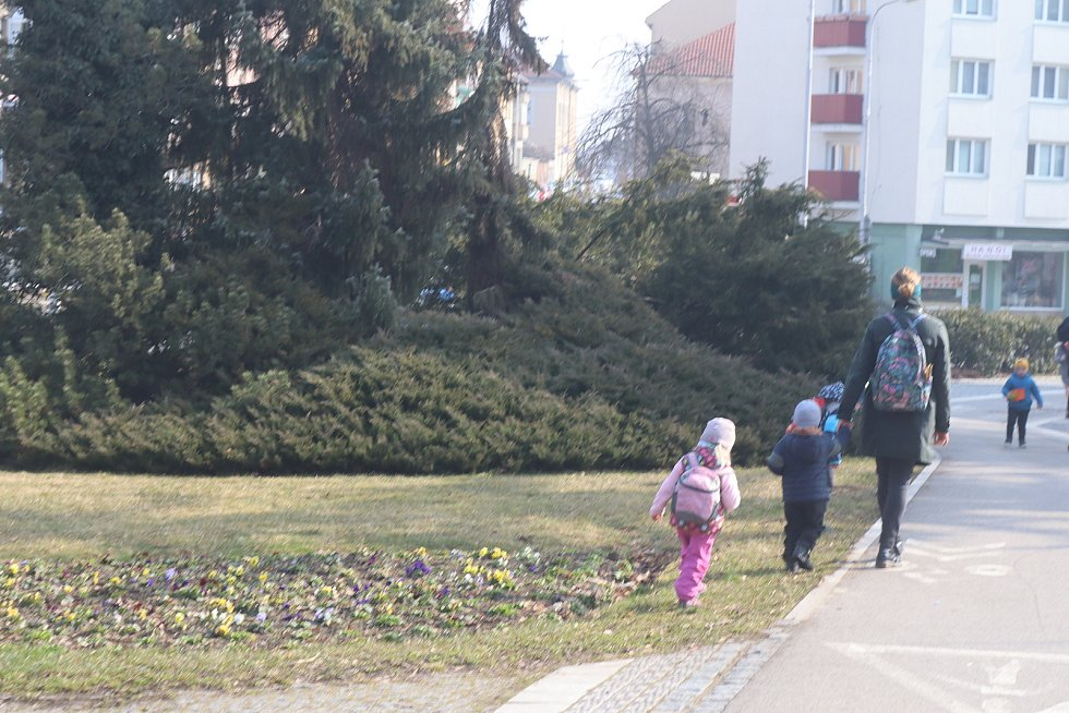 Mladá Boleslav rozkvétá.