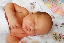 KAROLÍNA Žitňanská se narodila 8. července, vážila 3,77 kg a měřila 49 cm. Maminka Romana a tatínek Pavel si ji odvezou domů do Bělé pod Bezdězem, kde už se na ni těší sourozenci Denisa a David.