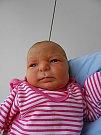 Veronika Nykielová se narodila 1. prosince, vážila 2,72 kg a měřila 45 cm. S maminkou Andreou a tatínkem Vlastimilem bude bydlet v Mladé Boleslavi, kde už se na ni těší bráška Davídek.