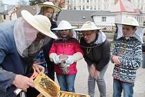 Stahovala se mračna a blížil se déšť. Navzdory nepříliš příznivému počasí čekala ve čtvrtek děti ze včelařského kroužku Domu dětí a mládeže, který vede Martina Kotlabová, první jarní prohlídka včelstva, o které se starají.