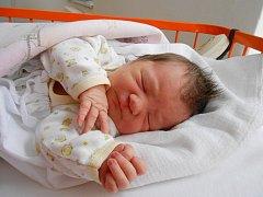 Anna Holmanová přišla na svět 4. prosince s mírami 3,7 kg a 52 cm. S maminkou Zdenou a tatínkem Petrem bude bydlet v Bukovně, kde už se na ni těší sourozenci Daniel, Terezka a Erika.