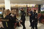 Zatýkání 12 osob v Mladé Boleslavi.