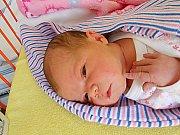 Karolína Dostálová se narodila 14. října, vážila 3,23 kg a měřila 50 cm. S maminkou Kateřinou a tatínkem Petrem bude bydlet ve Strenicích.