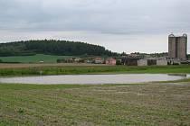Pole mezi Mikulovicemi a Horním Újezdem.