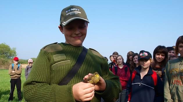 Ukázku odchytu ptáků v rákosí u rybníka Chobot provedl Tomáš Albrecht z Ústavu biologie obratlovců Akademie věd ČR ve Studenci.