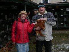 Vlastimil Cibulka s manželkou ze Zakřan v okrese Brno venkov si osvěží svůj chov králíkem Novozélandský červený.