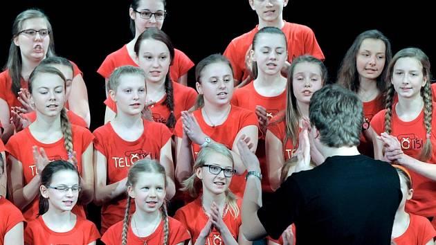 Krajskou přehlídku ve sborovém zpěvu letos hostil Národní dům v Třebíči a místní Základní umělecká škola. Během celodenního programu soutěže se na pódiu představilo téměř dvacet souborů z celé Vysočiny (na snímku soubor Telčísla z Telče).