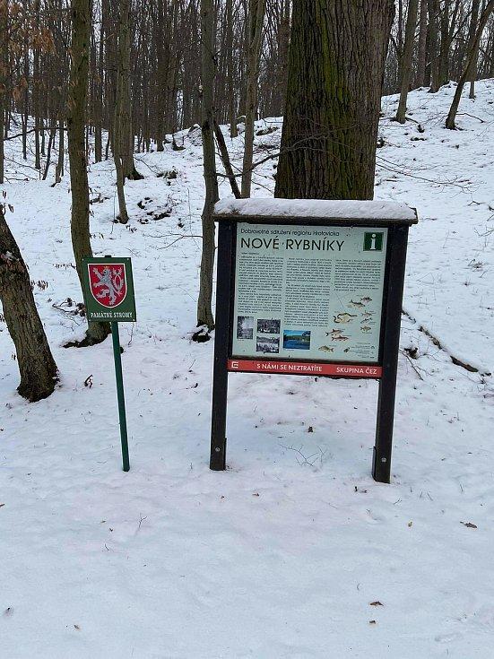Paní zima se ujímá vlády. Pošlete nám fotky, jak vypadá zima na Třebíčsku