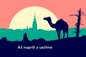 Festival Jeden svět v Třebíči.