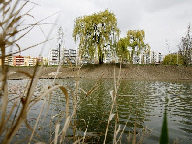 Voda je v přírodních koupalištích Vysočiny po deštích chladnější a někde ještě zkalená po bouřkách.