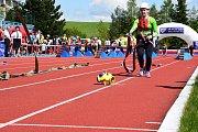 Závod v požárním sportu Třebíčské stovky a věže.