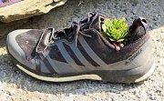 Z této odložené boty se stal originální květináč.