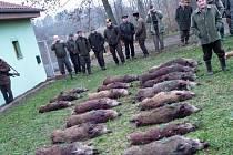 Důkazem, že divoká prasata patří k přemnoženým druhům v některých oblastech naší krajiny, je poslední naháňka členů Mysliveckého sdružení v Dalešicích. Během jediného dne se jim v katastru Slavětic podařilo skolit 23 kusů černé zvěře.