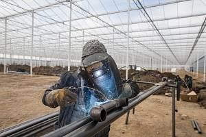 Mezi Třebíčí a Kožichovicemi staví největší skleník na Vysočině.