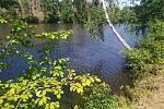 Zádušní rybník u Havlíčkova Brodu.