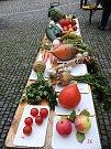 Jablkobraní v Náměšti nad Oslavou.