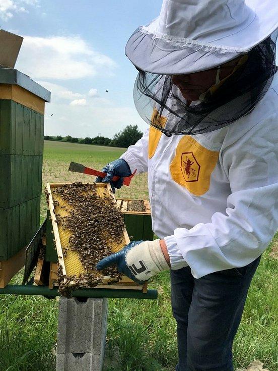 Vhodné prostředí pro včely zkontroloval včelař Pavel Štefka.