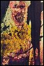 Pavel Herot: Vincentův běs, fotografika.
