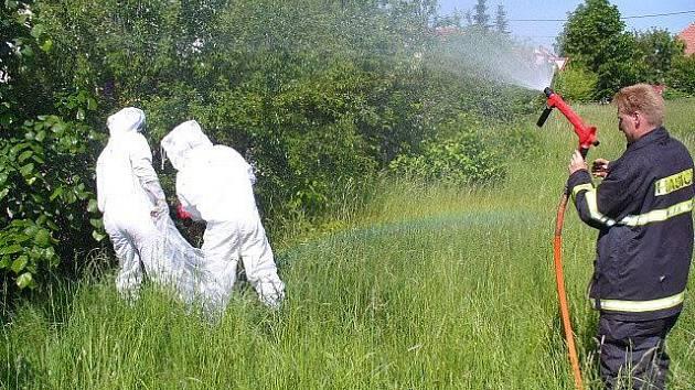 Odstraňování obtížného hmyzu u pískového hřiště v Jaroměřicích letos 21. května.