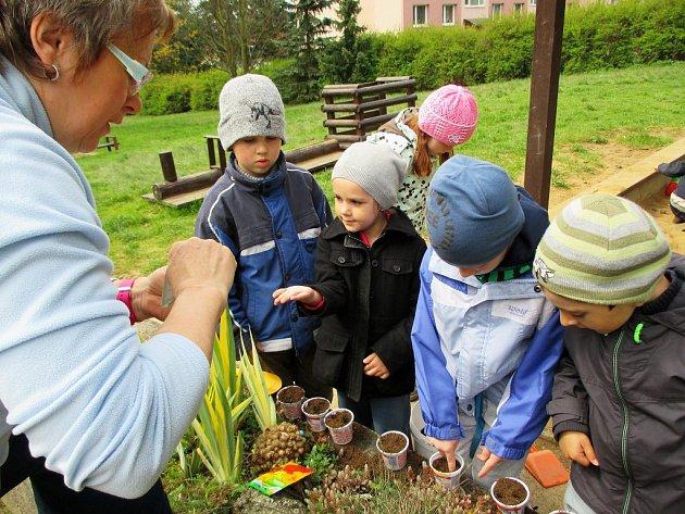 Jak funguje příroda a jaké jsou její zákonitosti? Přímo v praxi na školní přírodní zahradě se to nově mohou naučit předškoláci z MŠ Benešova v Třebíči.