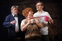 Jednou z ženských postav v Divadelní komedii je ředitelka a režisérka malé divadelní společnosti v jedné osobě, která musí řešit řadu žabomyších válek.