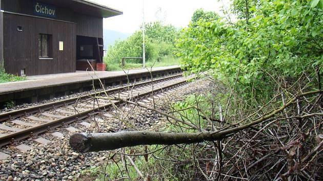 Stopy po kácení jsou u zastávky v Číchově patrné i dnes. Podle České inspekce životního prostředí tam mělo k nelegální prořezávce dojít mezi říjnem 2013 a červnem 2014.
