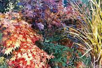 Podzimní příroda plná barev zve k procházkám
