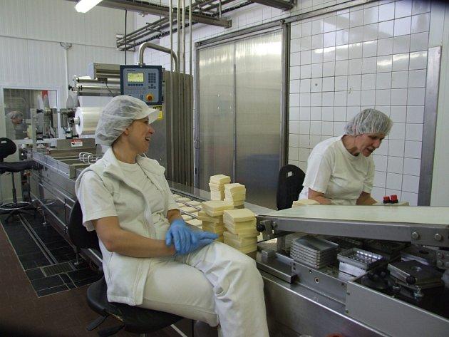 Balení tvrdých sýrů. Eidam se v Jaroměřicích balí krájený v 20 dekových bločcích nebo v desetidekových baleních plátků.