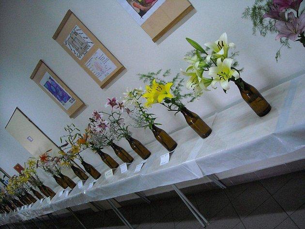 Výstava lilií probíhá o víkendu v budově školy ve Vladislavi.
