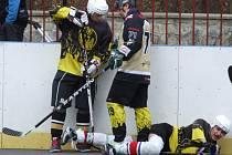 Hokejbalisté Třebíče a Přibyslavic (uprostřed) se už letos zřejmě nestřetnou. V play-off se oba týmy utkají s jinými soupeři a potkat by se mohly jedině ve finále.