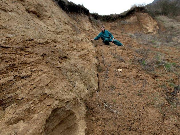 Archeolog Muzea Vysočiny ukazuje místo jedinečného nálezu.  Rokle nedaleko řeky bývala v pravěku skalnatá. Během tisíců let ji vítr zavál vrstvami písku a hlíny. Otázkou zůstává, zda do ní kosti odhodil člověk nebo zavlekly šelmy.