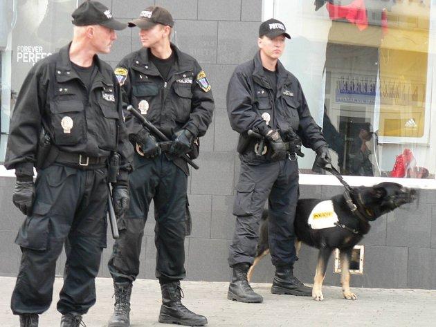 Policejní pes pomohl při vyšetřování