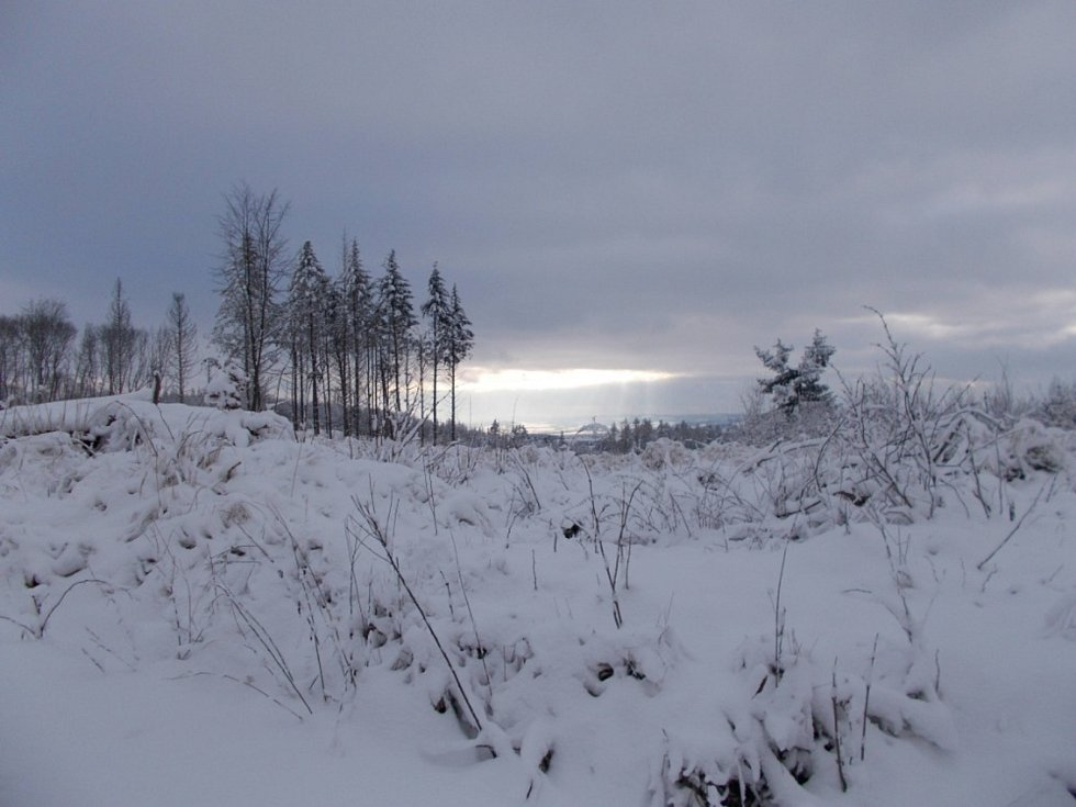 Za zimní nádherou do lesa, kopce i údolí. Podívejte se na fotky našeho čtenáře