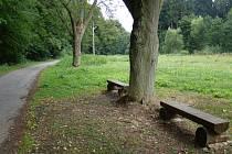 Místo louky je louka s lavičkami.