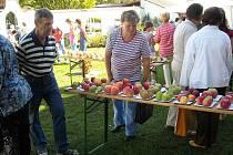 Jablkobraní ovládlo farskou zahradu