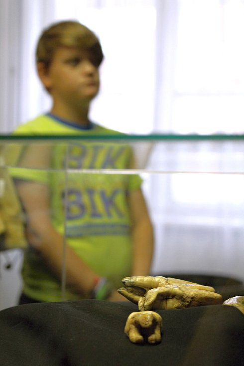 Muzejní noc v moravskobudějovickém Muzeu řemesel. 12 tisíc let staré medvědí zuby.