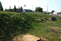 Rázné kouzlo po řádění bouřky provedli úředníci z třebíčské radnice a stromy nechali vykácet.