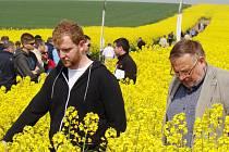 Polní den připravilo Zemědělské družstvo z Hrotovic již po patnácté. Na 140 jeho účastníků se vydalo do pole, kde mohli porovnat růst, květenství a další ukazatele 30 odrůd řepky. Akce se zúčastnil i univerzitní pedagog Jan Vašák (vpravo).