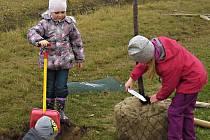 S výsadou nové aleje ve Studenci pomáhaly také nejmenší děti. S rodiči budou teď o stromy pečovat.