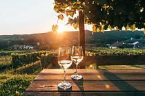 Po stopách Beethovena, Habsburků i vína