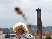 Čáp na komíně v Třebíči