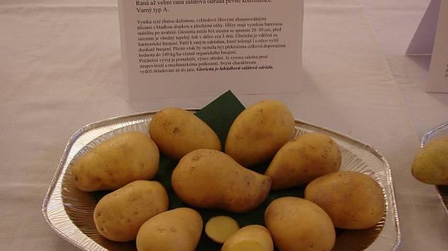 Výstava a ochutnávka brambor v Lukově v roce 2017.