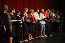 Ocenění z rukou představitelů města Třebíče obdrželo na Den učitelů čtrnáct žen. Řád bílé křídy dostalo jedenáct pedagogických a tři provozní zaměstnankyně škol.