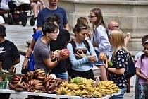 V neděli odpoledne třebíčský zámek nabídl bubenická vystoupení, pletení copánků a také africké ovoce a další speciality.