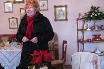 Vánoční hvězda patří k adventu po celé Evropě stejně jako vánoční strom přímo ke Štědrému dni.