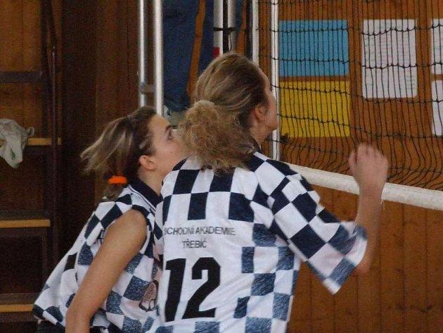 Volejbalistky Obchodní akademie Třebíč (na snímku školní družstvo) nečeká snadný úkol, ale o extraligu se určitě poperou.