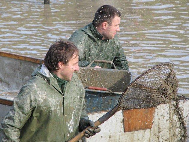 Výlov rybníku v Hornicích se stal skutečnou kulturní událostí.